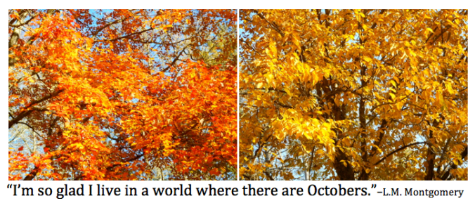 Quote about October